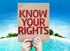"""Hands holding a cardboard sign with """"Know Your Rights"""" written on it."""